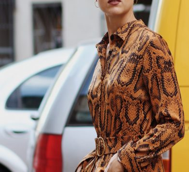 16 Snake Print Dresses To Buy NOW!